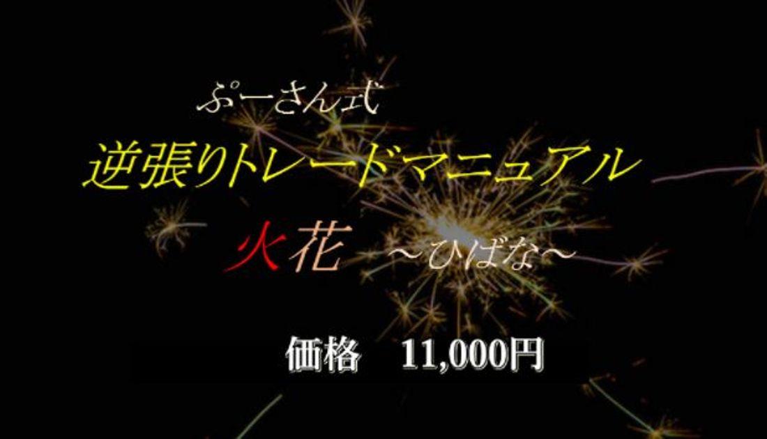 ぷーさん式FX逆張りトレードマニュアル(火花) ローソク足で利益を得る講義